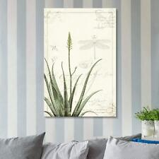 Wall26 - Vintage Style Aloes Plant Gallery - CVS - 32x48 inches