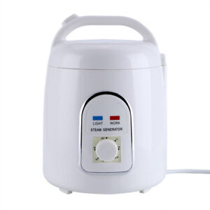 1.5‑1.8L Home Portable Steam Generator Saunas Pot 220V EU Plug EB