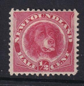 Newfoundland 1887 1/2c Rose-Red SG49 Fine Mtd Mint Stamp (Nicely centered )