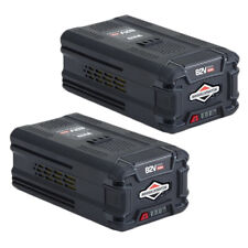 Briggs and Stratton Genuine OEM Replacement Battery # 1760226-2PK