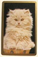 Vintage Swap/Playing Card - SWEET WHITE KITTEN / CAT - Gold Border - Mint Cond