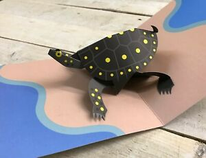 Turtle Pop Up Card By 2ToTango