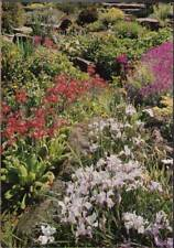 (wry) Postcard: Wisley, Surrey, Royal Horticultural Society's Garden