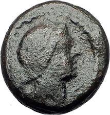 PELLA in Macedonia 1stCenBC Authentic Ancient Greek Coin APOLLO & TRIPOD i62235