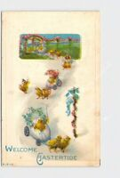 PPC POSTCARD EASTER CHICKS PULLING EGG CARTS FULL OF OTHER CHICKS FLOWERS EMBOSS