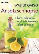 Ansatzschnäpse von Walter Gaigg (2016, Taschenbuch)
