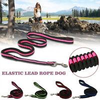 perro Perro gato Flexible adj. Cuerda de tracción Cinturón de perro Mascota f.