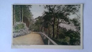 Loch Lomond Vintage colour Postcard c1930s Ardlui Road