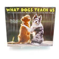2020 What Dogs Teach Us Box Calendar
