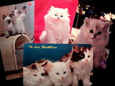 6 Vintage Cat Postcards: Lenticular Siamese, Blue Eyed Snowshoe, First Day Cover