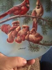 Backyard Harmony THE SINGING LESSON Cardinal Bird KNOWLES Collection Plate