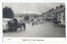 tq1726 - Cornwall - Ponies , Hessary Tor TV Mast, in Princetown - postcard