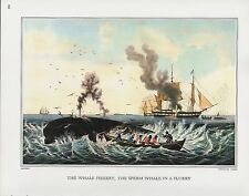 """1972 Vintage Currier & Ives FISHING """"SPERM WHALE FISHERY"""" COLOR Print Lithograph"""
