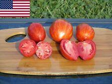 Striped Roman Organic Tomato Seeds- Heirloom Variety- 40+  2016 Seeds