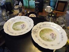 Pair of Antique Bavarian Art Nouveau B.R.C. Porcelain Plates PENADE Crown Mark