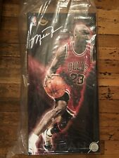 Enterbay rm-1042 Michael Jordan 1/6 scale Red away real masterpiece 23
