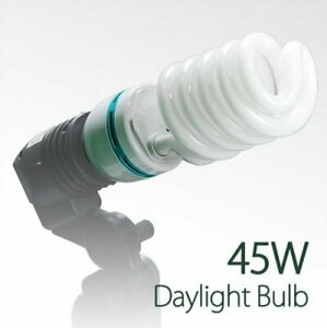 LS Photography 45-Watt Photo CFL Full Spectrum Photography Light Bulb