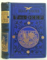 Half Hours in the Deep 1887 oceanography book marine life saltwater sea fishes