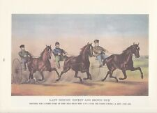"1974 Vintage Currier & Ives HORSE RACING ""TROTTERS, UNION COURSE NY"" COLOR Litho"