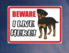 BEWARE I LIVE HERE - ROTTWEILER House/Home Window/Door/Porch Printed Sticker