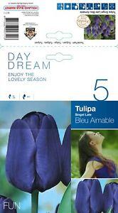 """@//(◕‿◕)\@ Triumph Tulpe """" Bleu Aimable """" ( 5 Blumenzwiebeln )   ~"""