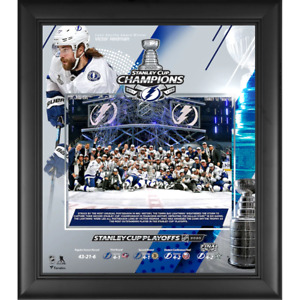 """Tampa Bay Lightning Frame 15"""" x 17"""" Stanley Cup Champions Frame - New"""