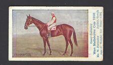 SNIDERS & ABRAHAMS - AUSTRALIAN RACEHORSES (HORIZONTAL) - THE GRAFTER