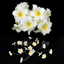 Creative Frangipani LED String Lights, AA Battery 3M Floral Holiday Lighting
