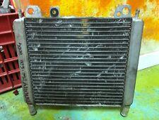 RADIATORE BEVERLY 250-500