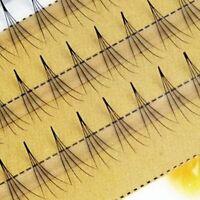 False Eye Lashes 0.07 C Black Individual 4D Wave Mink Eyelashes Extension
