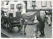 ALSACE c. 1935 -  Vendanges  Chevaux Charettes - DIV 6981