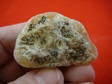 (k-3603) 10 g Rare Kauri tree Gum copal young Amber New Zealand Tane Mahuta