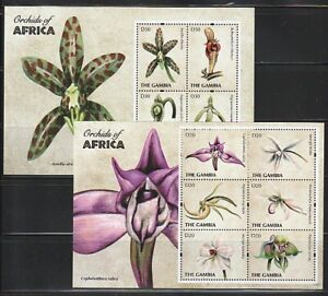 Gambia   2011   Sc # 3400-01   Orchids    2   Sheet of 6   MNH   (54592)