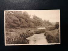 More details for vintage postcard anglesey - the dingle, llangefni -  early 1900's.