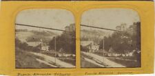 Suisse Fribourg Charles Gaudin Photo Stereo Diorama Tissue Vintage albumine