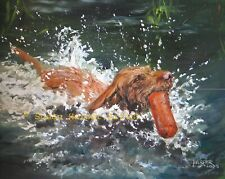 More details for sale hungarian wire-haired vizsla signed dog print by susan harper unmounted