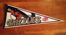 Independent League Gateway Grizzlies Sponsor Pennant