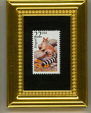 Ringtail Or Ring-Tailed Cat Collectible Glass Framed Postage Micro Masterpiece!