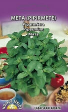 Peppermint seeds (Mentha piperita) 0,1g