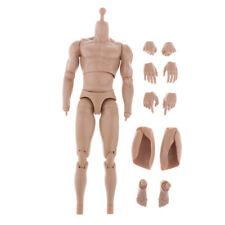 """1//6 SCALA WorldBox standard AT011 MASCHIO 12/"""" Figura Corpo con le mani Nuovo In Magazzino"""