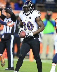ED REED 8X10 PHOTO BALTIMORE RAVENS PICTURE NFL