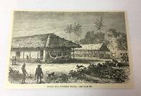 1885 magazine engraving ~ INDIAN HUT, SOUTHERN BRAZIL
