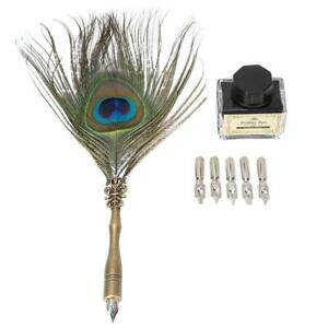 NEW Calligraphy Peacock Feather Dip Quill Pen Writing Ink Bottle Set Stationery