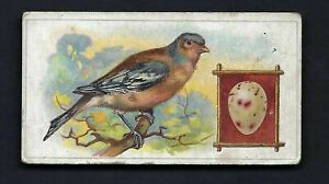 FRY - BIRDS AND THEIR EGGS - #14 THE CHAFFINCH