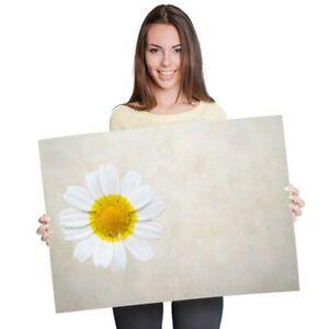 A1 - Daisy Flower Garden Nature Poster 60X90cm180gsm Print #2744