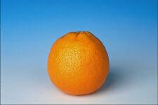 699097 Orange A4 Photo Texture Print