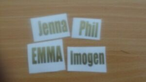 Custom Personalised name stickers / labels /vinyl stickers / word stickers
