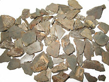 NWA stone meteorite slices 50g 50 gram lots nice chondrite pieces