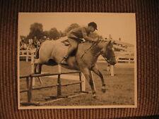 "Champion Welsh Mountain Pony ""Farnley Sunflower"" 1950's Original Horse Photo"