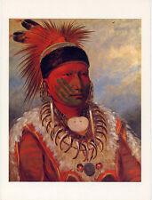 The White Cloud•Head Chief of the Iowas•Portrait Art by George Catlin POSTCARD